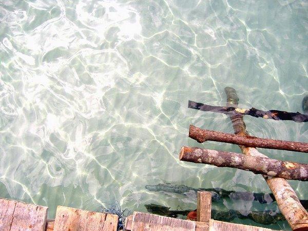 น้ำทะเลที่แสนในสะอาด